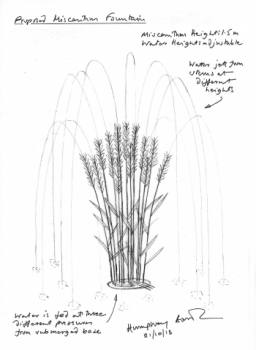 New Design Miscanthus Fountain
